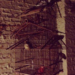 Art Macabre Box 1
