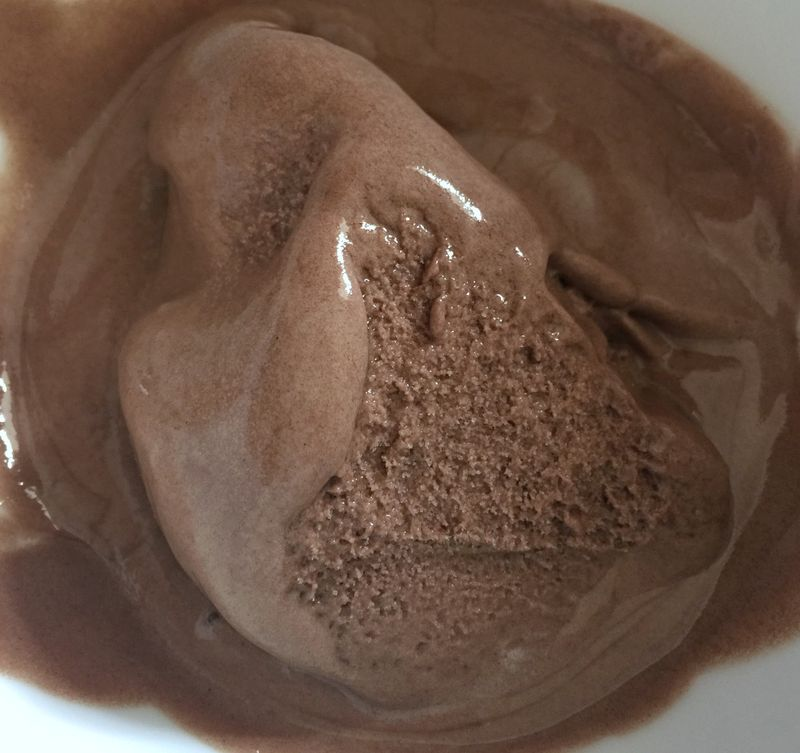 Chocolate Coconut Vegan Frozen Dessert