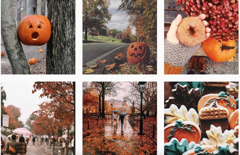 Autumn Fall Pumpkins